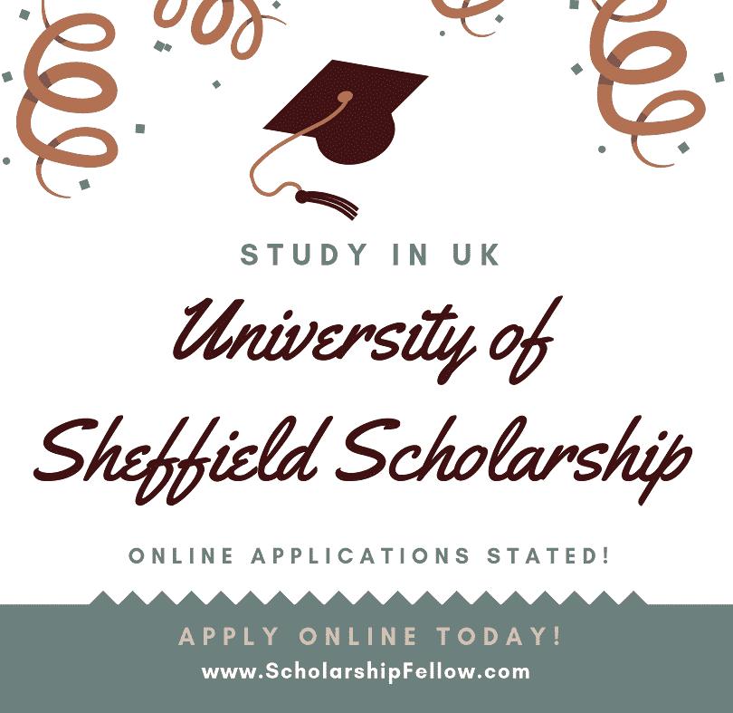 The University of Sheffield Scholarship 2019-2020