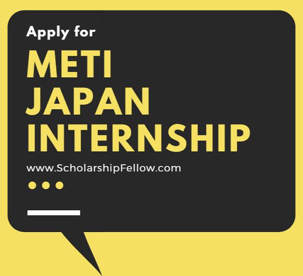 METI Internship Japan