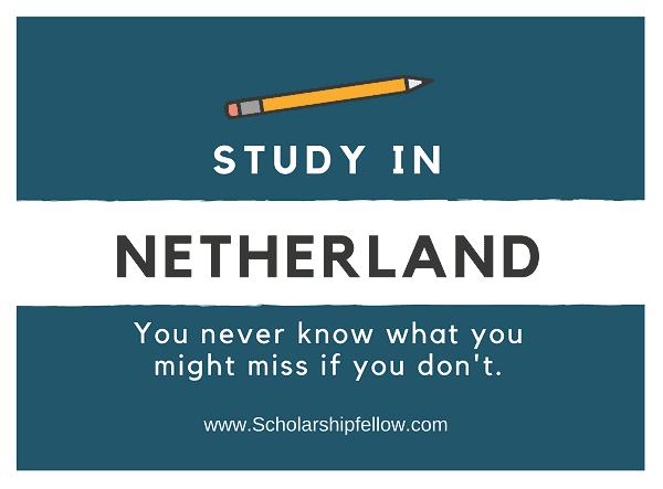 Mena Scholarship - Study in Netherland
